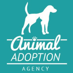 Animal Adoption Agency