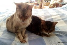 Loki & Monty